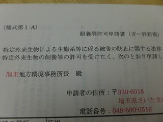 P1070994.JPG