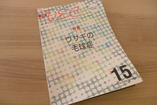 P1100810.JPG