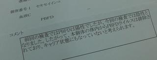 P1100462.JPG